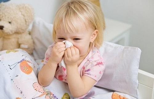 Phòng tránh bệnh viêm mũi dị ứng cho trẻ - Benh.vn